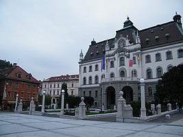 Ljubljana kurve 6 Marvellous
